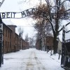 Lessons from Auschwitz
