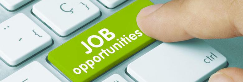 Job Opportunities..