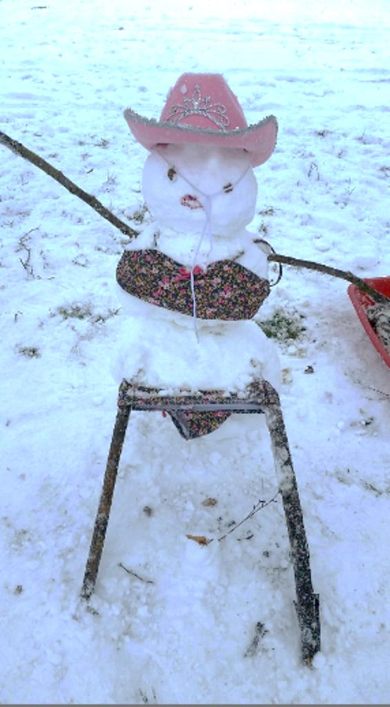 snowcowgirl