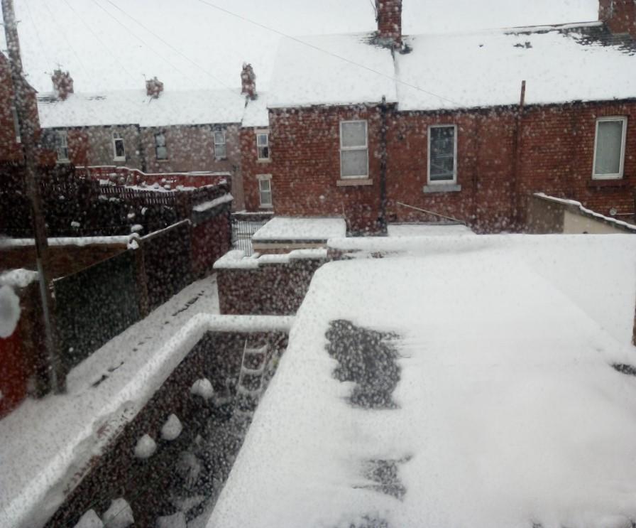 snowy-carlisle3
